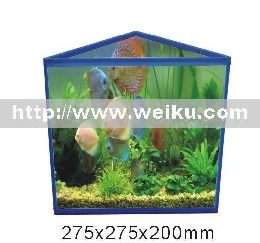 triangle glass fish aquarium aquariums tanks