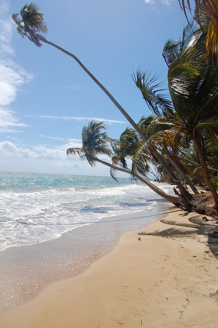 Humacao Puerto Rico My Travels Pinterest