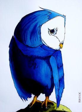 'Night Owl' by Kyle Brock