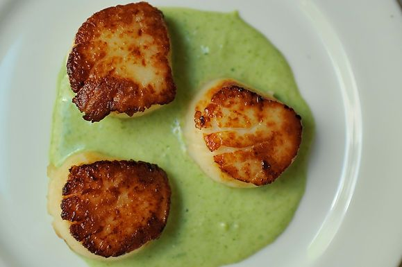 Seared Scallops with Spring Onion and Tarragon Cream this looks so ...