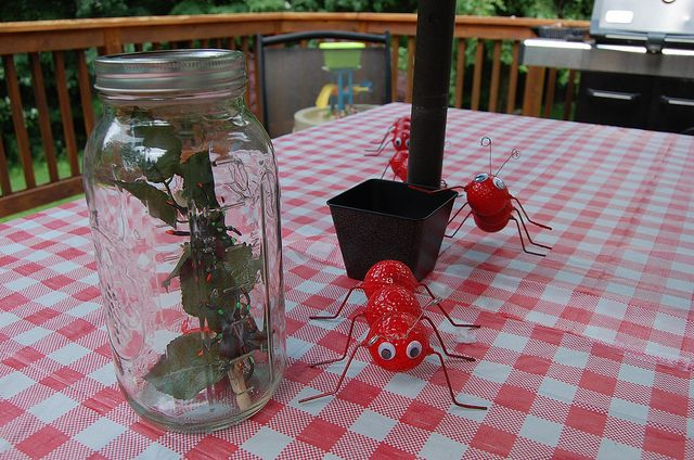 Ant Picnic Table Decorations Photograph Bug Party Table De