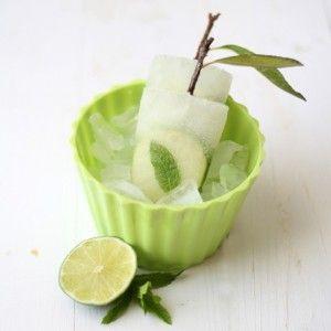 Mojito Fruit Ice Pops Recipes — Dishmaps