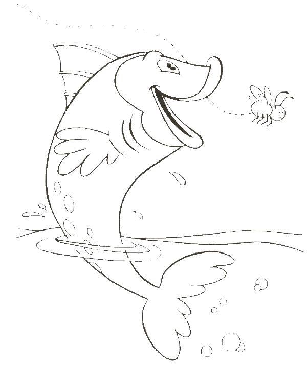 How To Draw Marine Fish