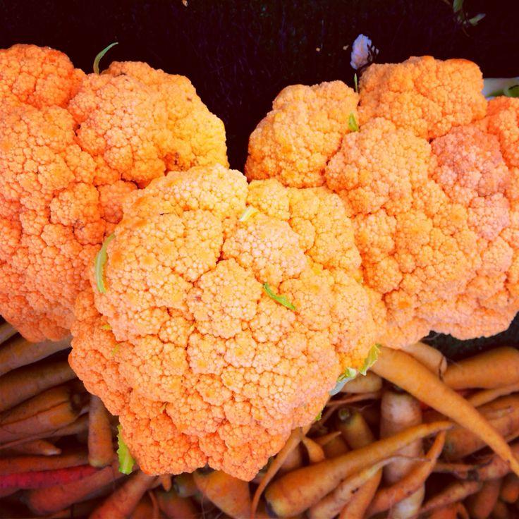 Cheddar Cauliflower | Food! | Pinterest