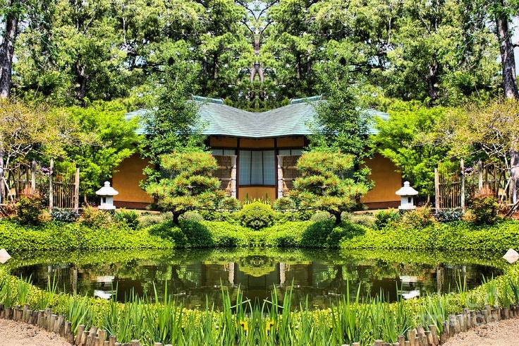 Japanese Garden At Hermann Park Houston Texas Print By Cynthia Broomf