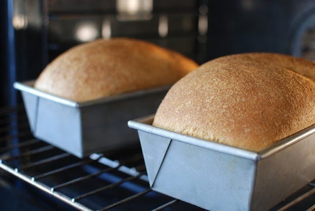 Simply So Good: Anadama Bread | Breads | Pinterest