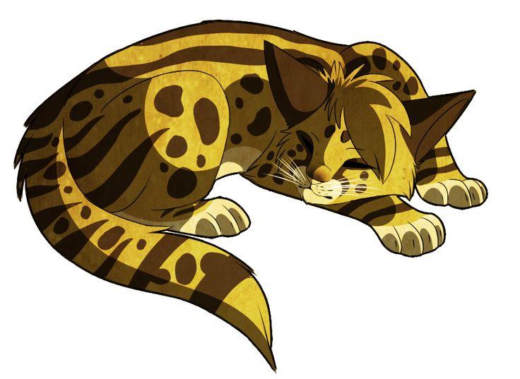 Warrior Cats Lynx Kit