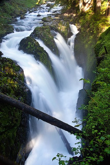 Sol Duc Falls, Olympic National Park; photo by JD Hascup