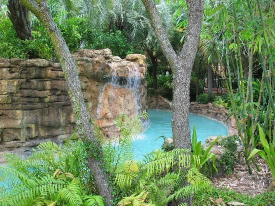 Lazy River In My Backyard : More like this lazy river , rivers and lazy river pool