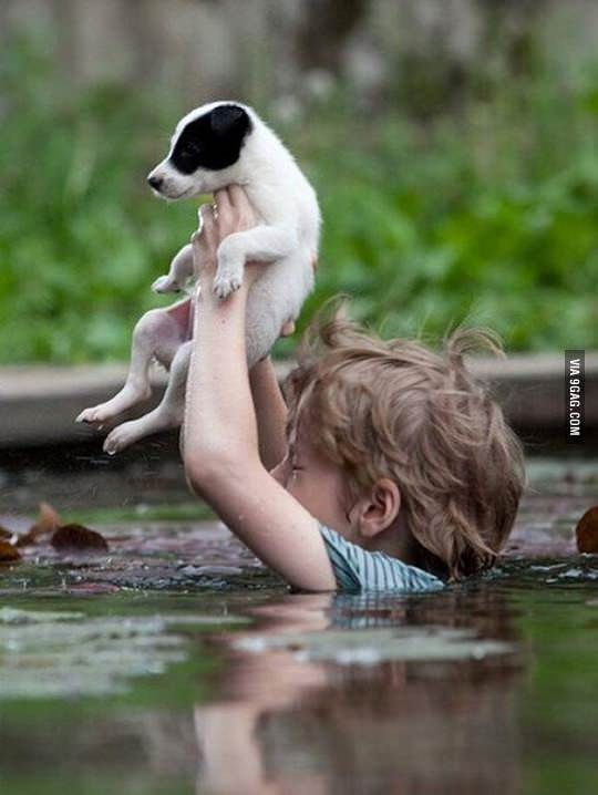 A Little Boy in Serbia Battles the Floods Carrying His Puppy -  MAY 2014