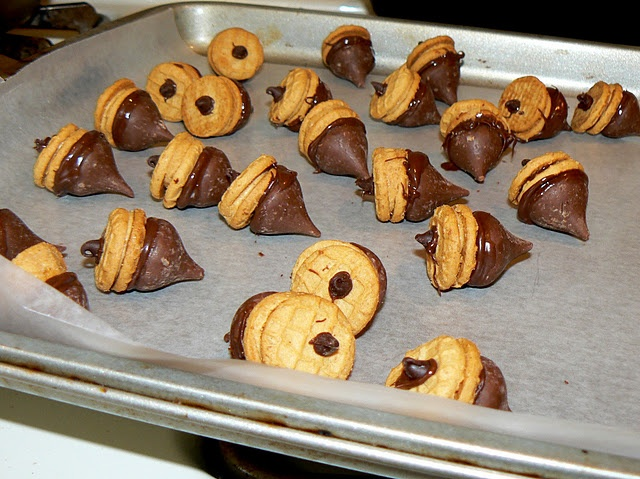 Chocolate Peanut Butter Acorns | recipes | Pinterest