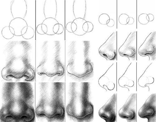 how to draw a detailed nose