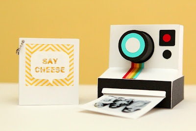 Paper Issues: Polaroid Camera Mini