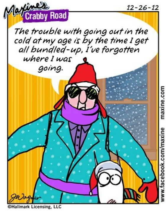 Maxine Cartoons on Aging Quotes From Maxine About Aging