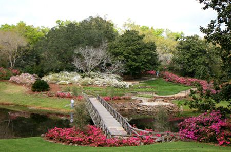 Bellingrath Gardens AL WAYS Up Over Through And