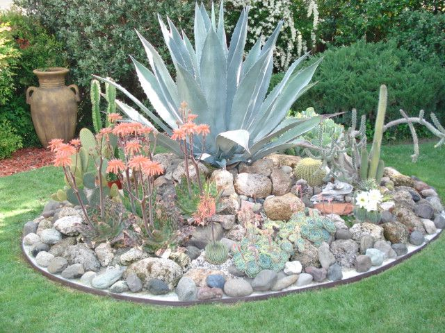 Agave Island Succulent Container Gardens Wreaths