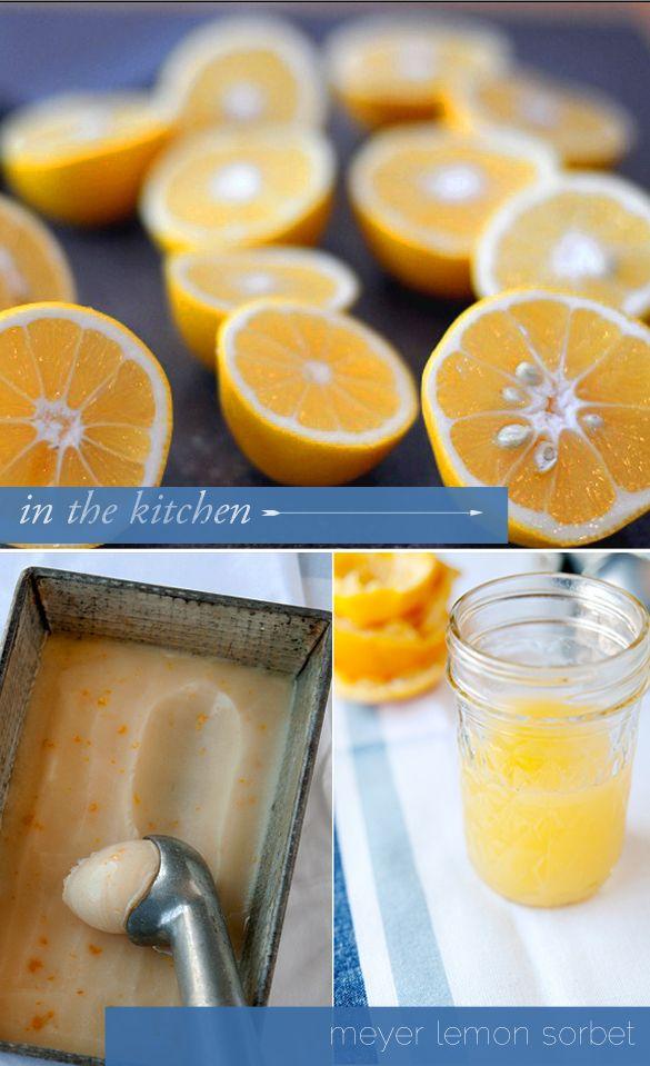 Meyer Lemon Sorbet. Fresh and sweet. | Food | Pinterest