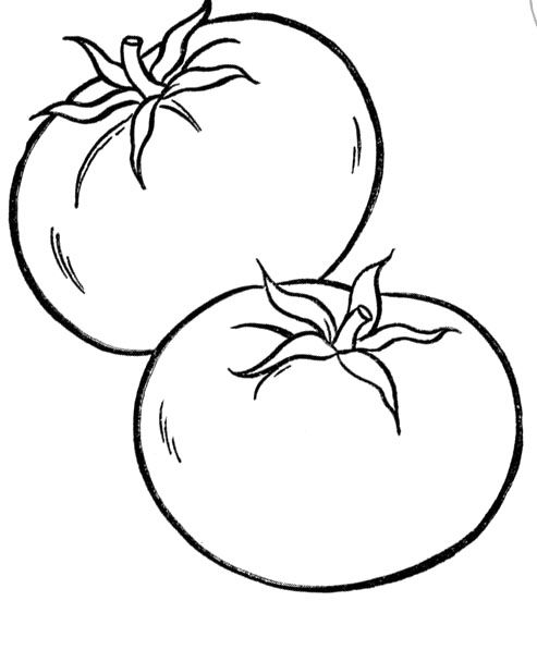 coloring pages tomatoes - photo#1