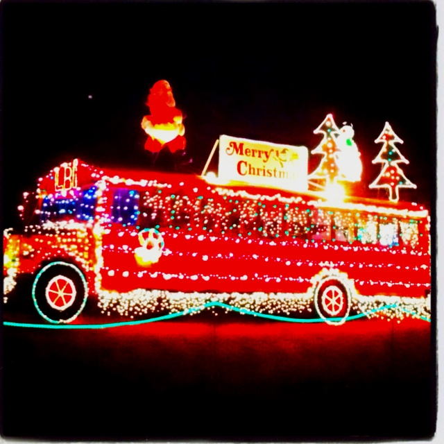 Rent a bus for whole family to go check out Christmas lights!!