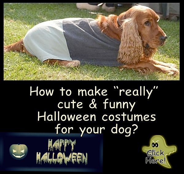 really easy halloween costumes