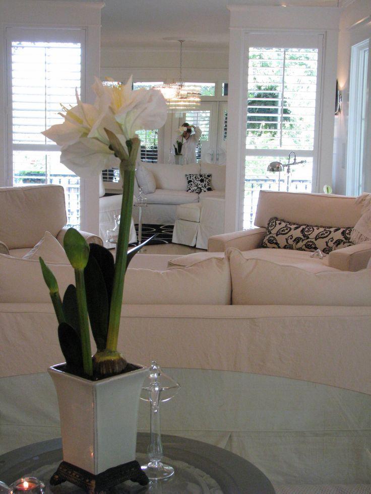 Designer dream home eurekasprings org lovely for Southern living phone number