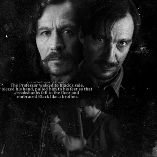 Sirius Black and Remus Lupin | Books etc. | Pinterest