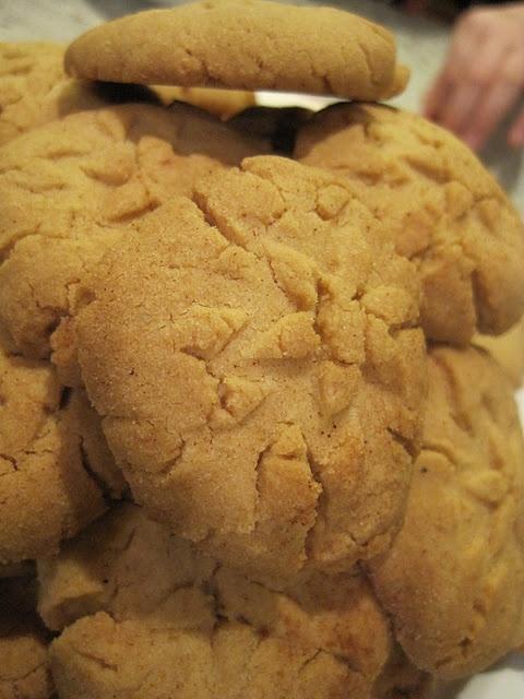 Brown Sugar Shortbread Cookies | Mays Likes | Pinterest