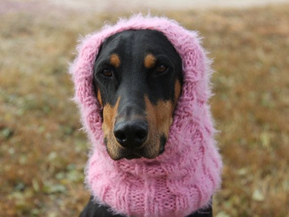 Dog Snood Knitting Pattern : Hand knitted Snood for Dog - classic cable pattern - L to XL Dog - Pi?