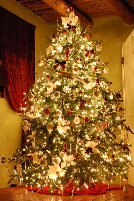 Christmas tree color scheme house pinterest - Christmas tree color schemes ...