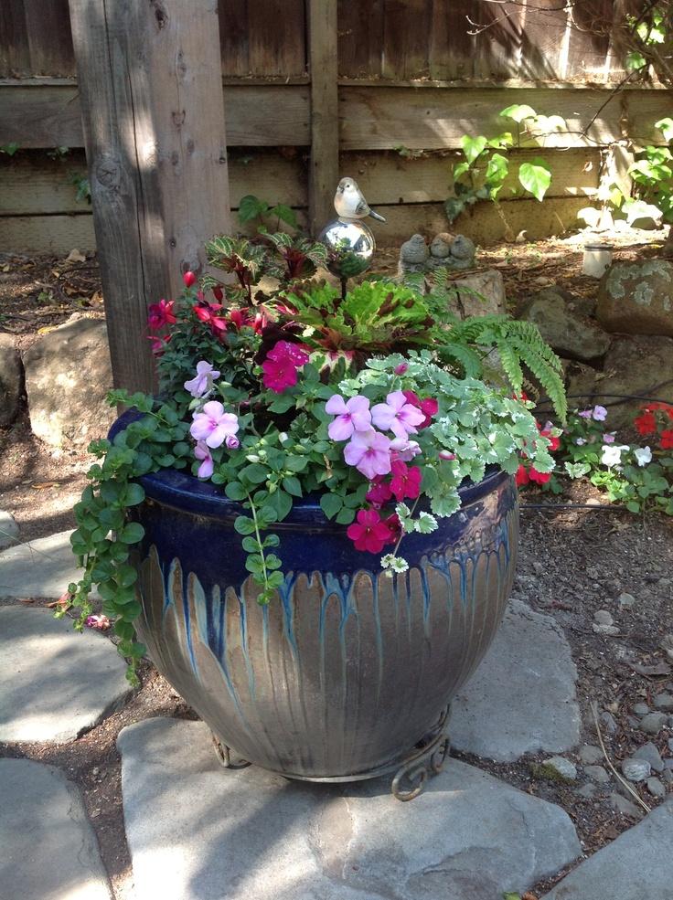 Great shade garden container gardening pinterest - Container gardens for shade ...