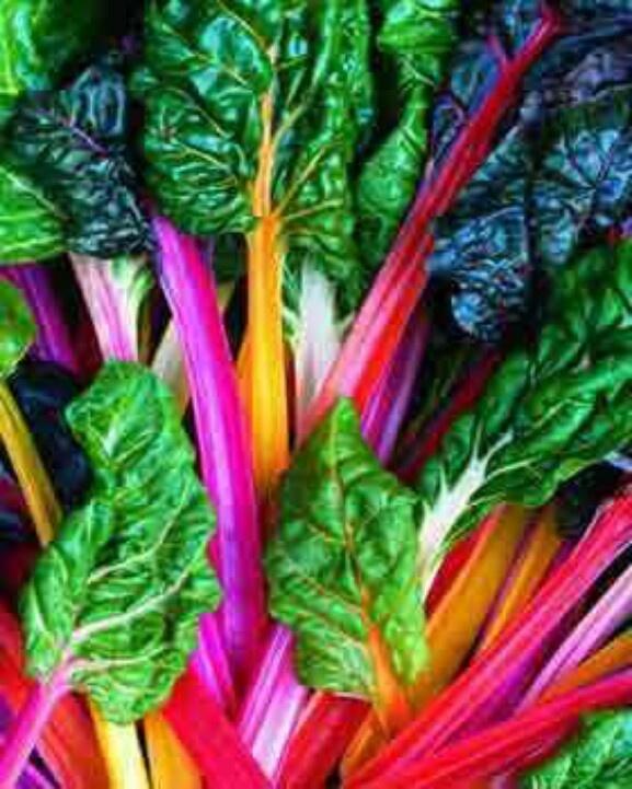 Rainbow Chard | FRUITS&VEGETABLES | Pinterest