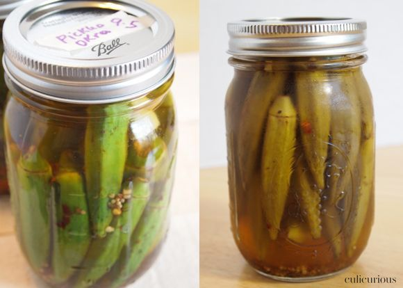 Pickled Okra | Great Southern Food Recipes | Pinterest