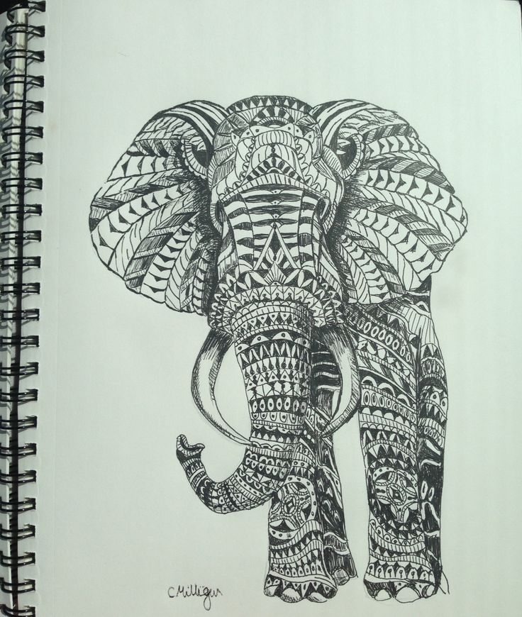 Elephant Drawings Pinterest Elephant Drawing
