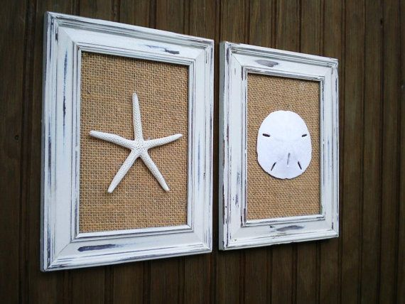 Cottage Chic Sand Dollar Wall Art Beach Wall Art Coastal Decor Sea