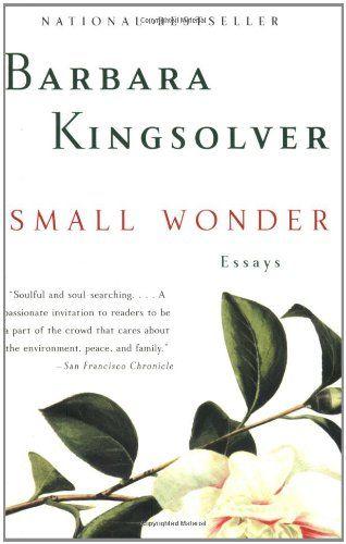 essays about poisonwood bible