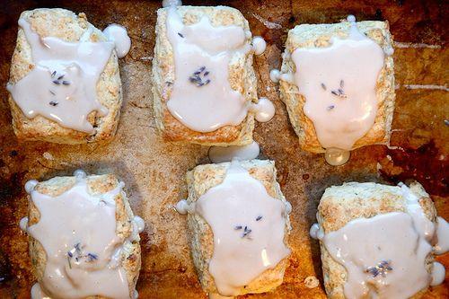 lavender and toasted walnut scones | {lavender + honey} | Pinterest
