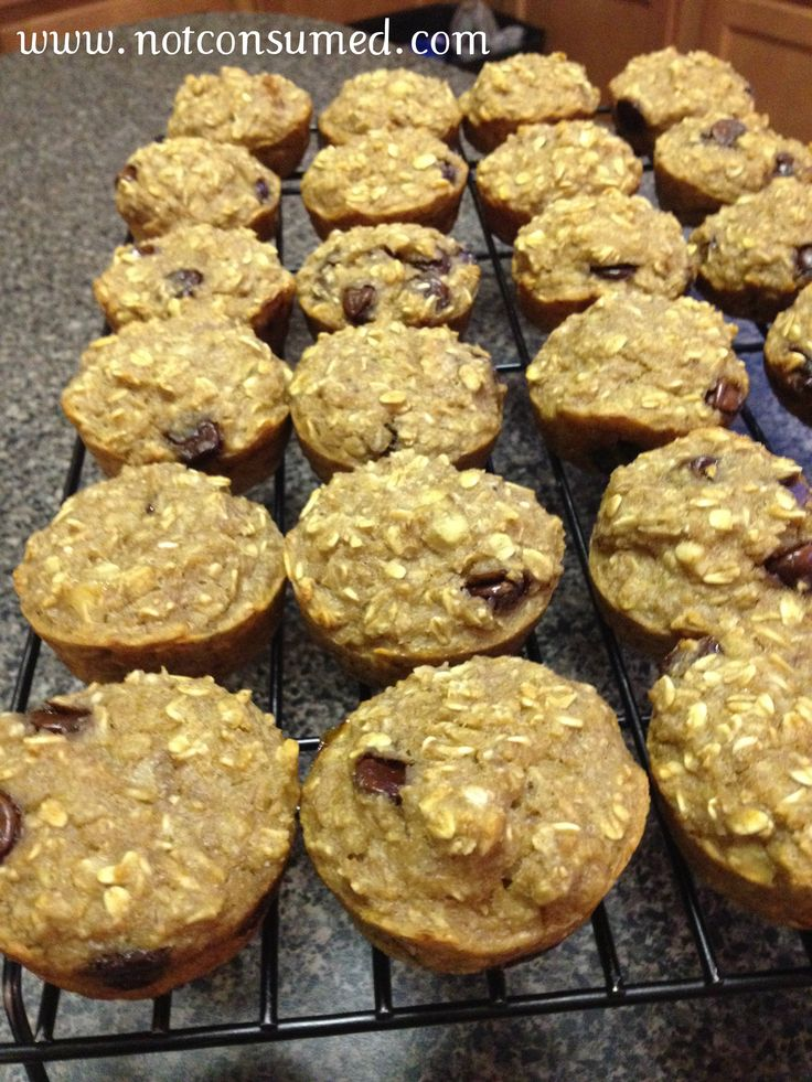 free low fat vegan oatmeal muffins oatmeal muffins with raisins dates ...