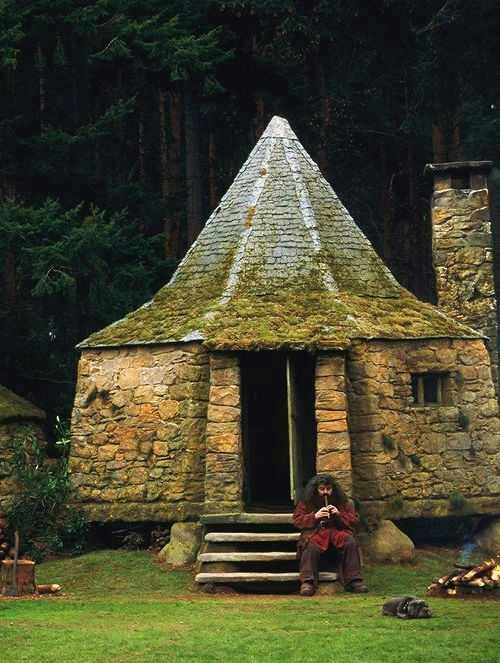 Hagrid 39 s house diorama pinterest What house was hagrid in