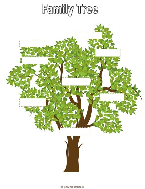 Family Tree Outline For Kids | Family Charts | Pinterest