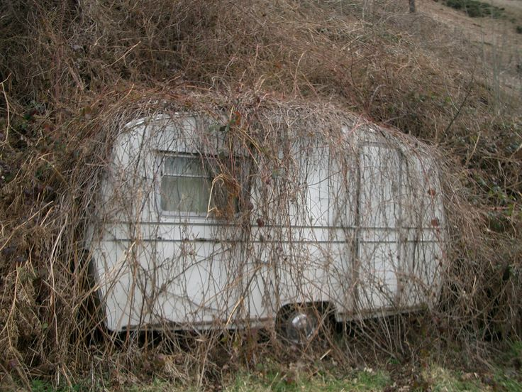 Natural cammo...   Post Apocalyptic Camping Ideas   Pinterest