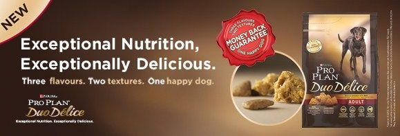Pro Plan Duo Delice для собак мелких пород Курица/рис