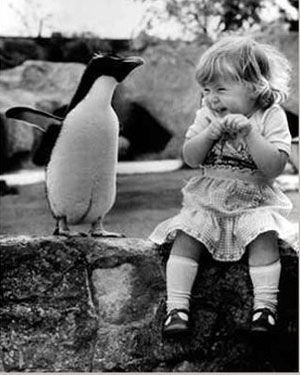 Friendship Gesture - The Baby and Penguin