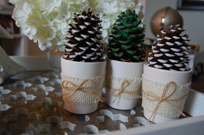 Christmas Pine Cones Made2style Projects Pinterest