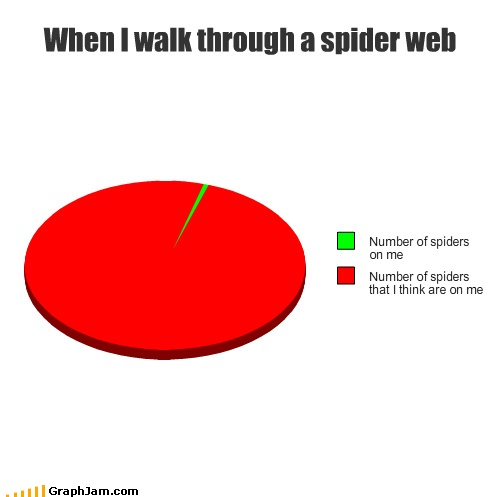 Walking through a spider's web
