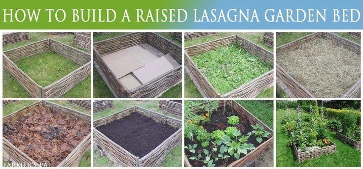 Lasagna garden gardens gardening pinterest - Lasagna gardening in containers ...