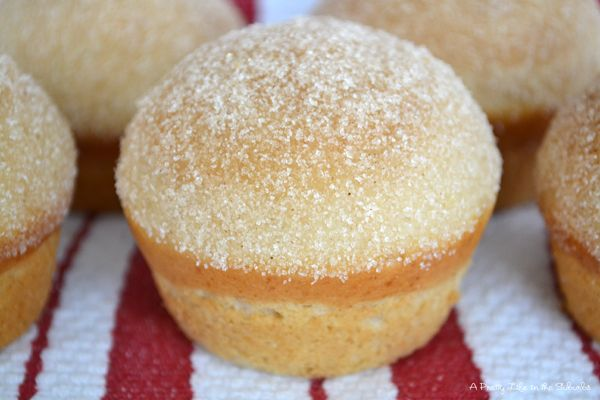 Cake Doughnut Muffins...oh yes please! - A Pretty Life In The Suburbs