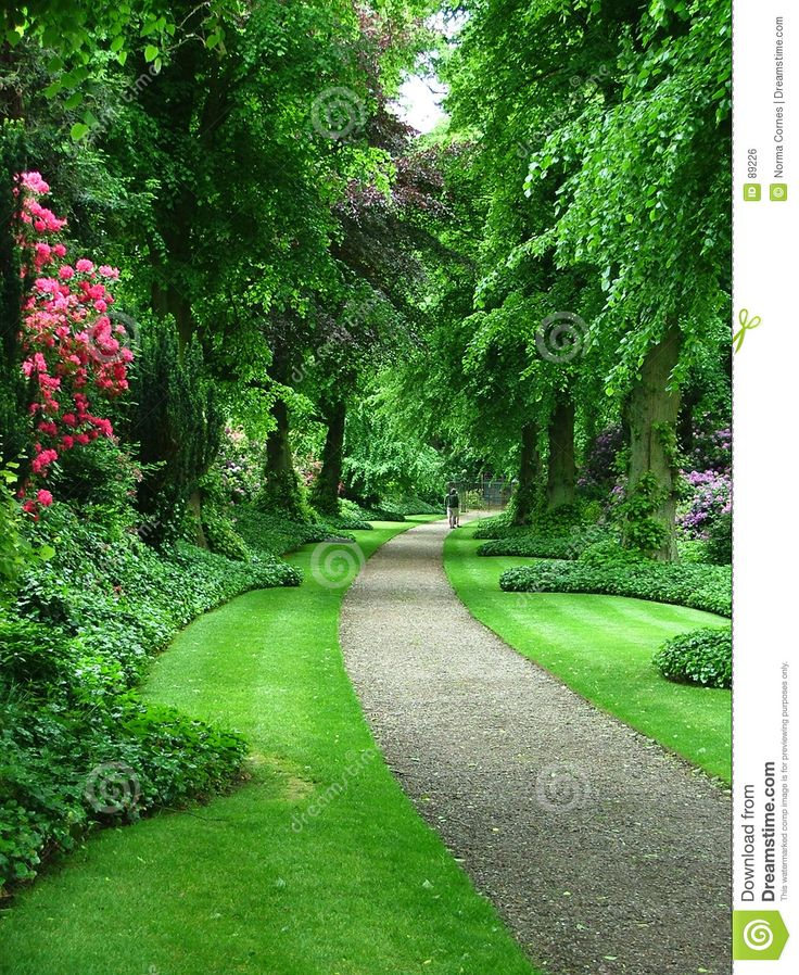 Garden Paths Gravel Google Search Yard Ideas Pinterest