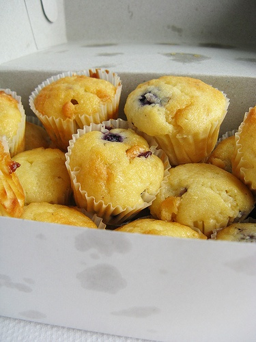Blueberry White Chocolate Muffins | dang dang licious | Pinterest