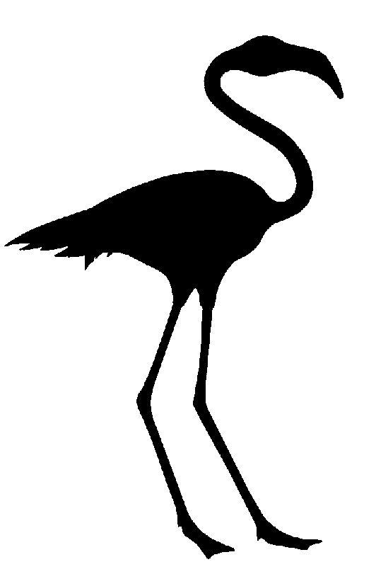 Flamingo Clip Art Free  Clipart Panda  Free Clipart Images