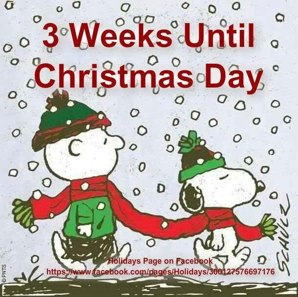 how many weeks till xmas
